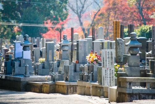 お墓の引っ越しについての写真